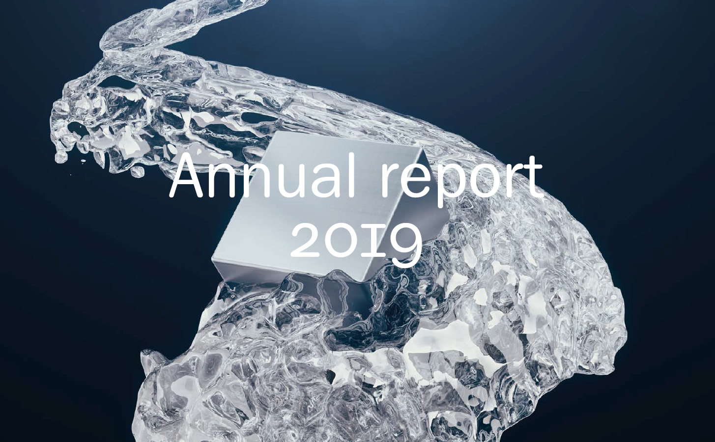 Annual report 2019 cover