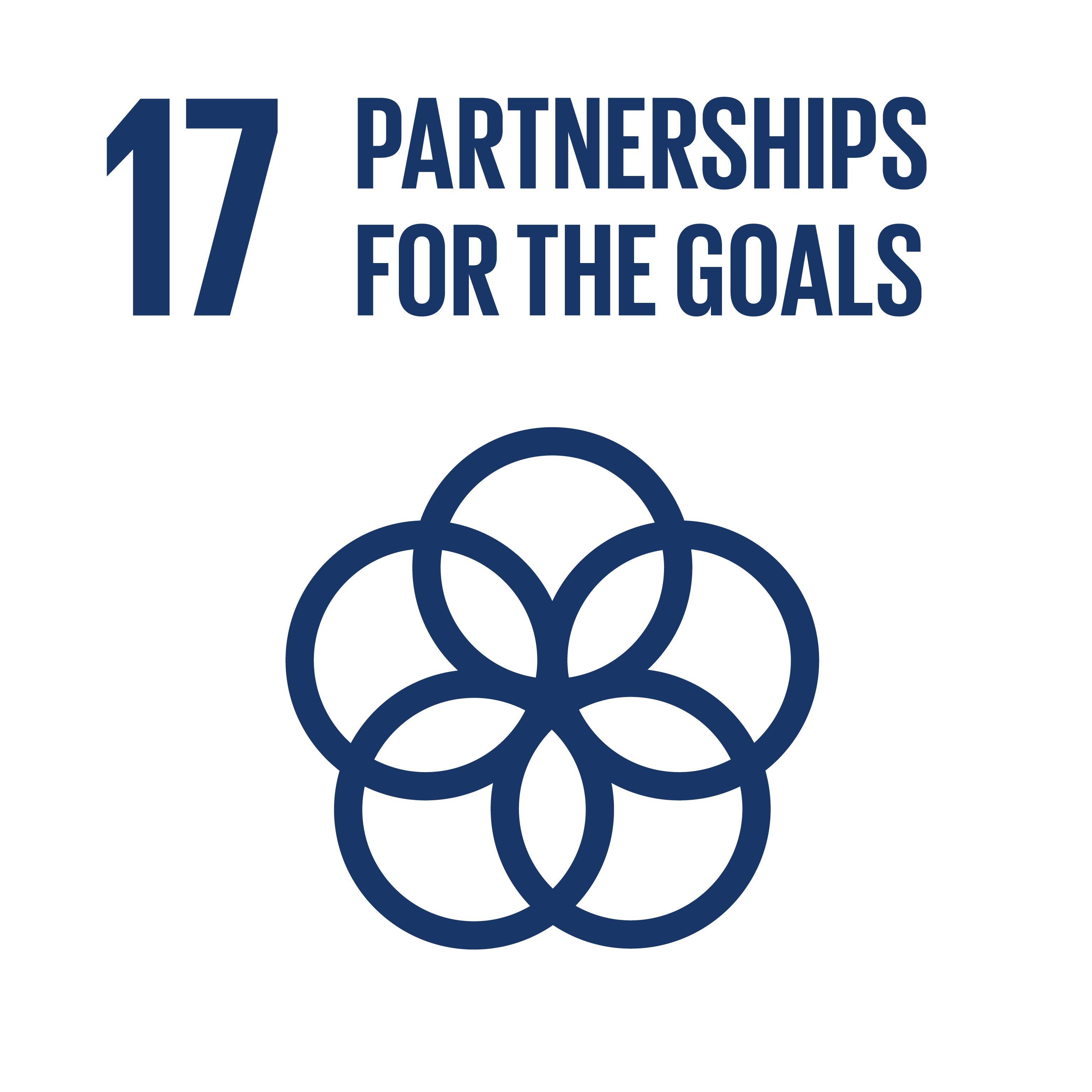 SDG 17 logo